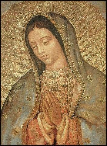 """Madonna di Guadalupe, Protettrice del nascituro contro la """"cultura dellamorte"""""""