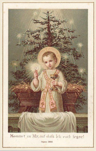 La vera origine dell'Albero di Natale, ideato da San Bonifaciovescovo