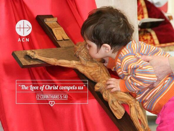 Il Papa: basta violenze contro i cristiani; necessaria l'unione di tutti i cristiani di fronte allepersecuzioni