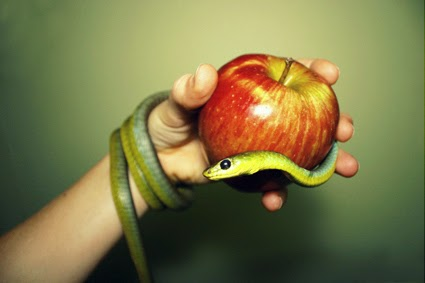 snake_and_apple_